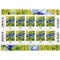 Zusatzbild Briefmarke DeutschePost Markenset, Postkarte