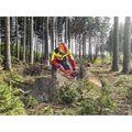 Zusatzbild Forsthelm Protos Integral Forest F39, rot / gelb