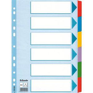 Register Esselte 100168, Mylar, A4, blanko